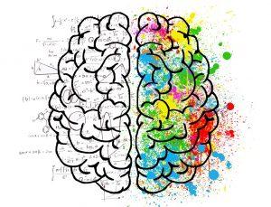 ¿Cuáles son los objetivos y el campo de aplicación de las pruebas psicotécnicas?